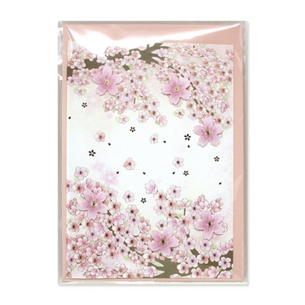[현재분류명],180822AJB-17092 벚꽃카드 JD-14,디자인문구,편지,카드,카드,일러스트카드
