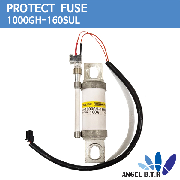 protect-fuse.jpg