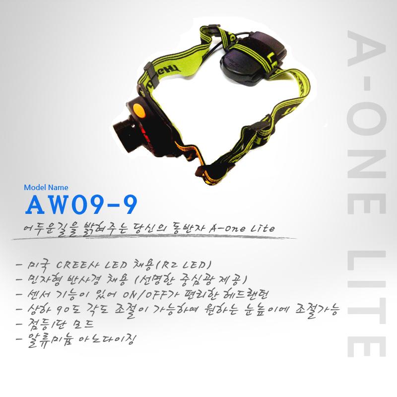 info_aw09-9_01.jpg
