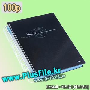 플러스화일100 (Plus File 100p/A4)