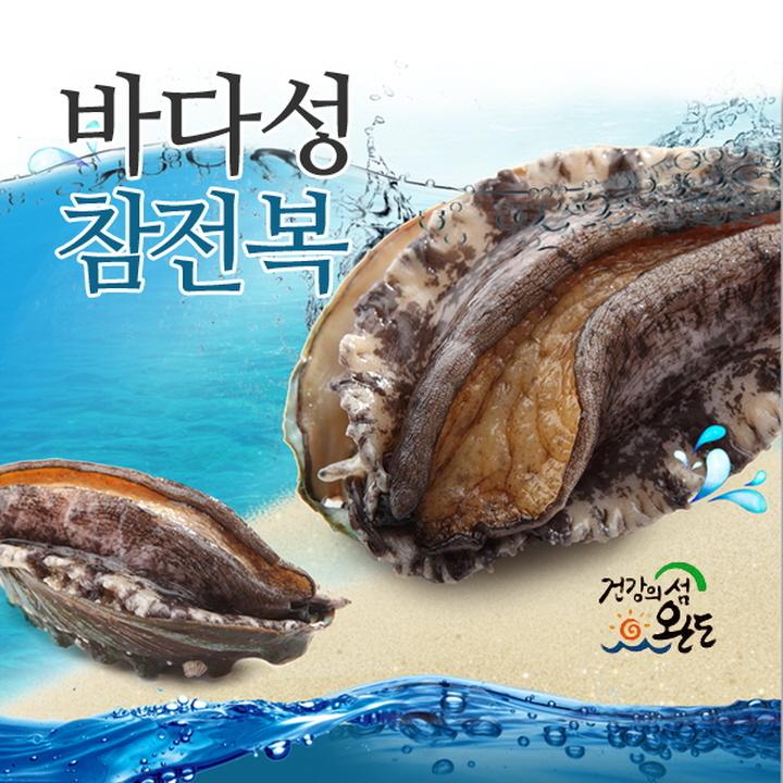 Wm 전복(활전복)(15미/1kg)