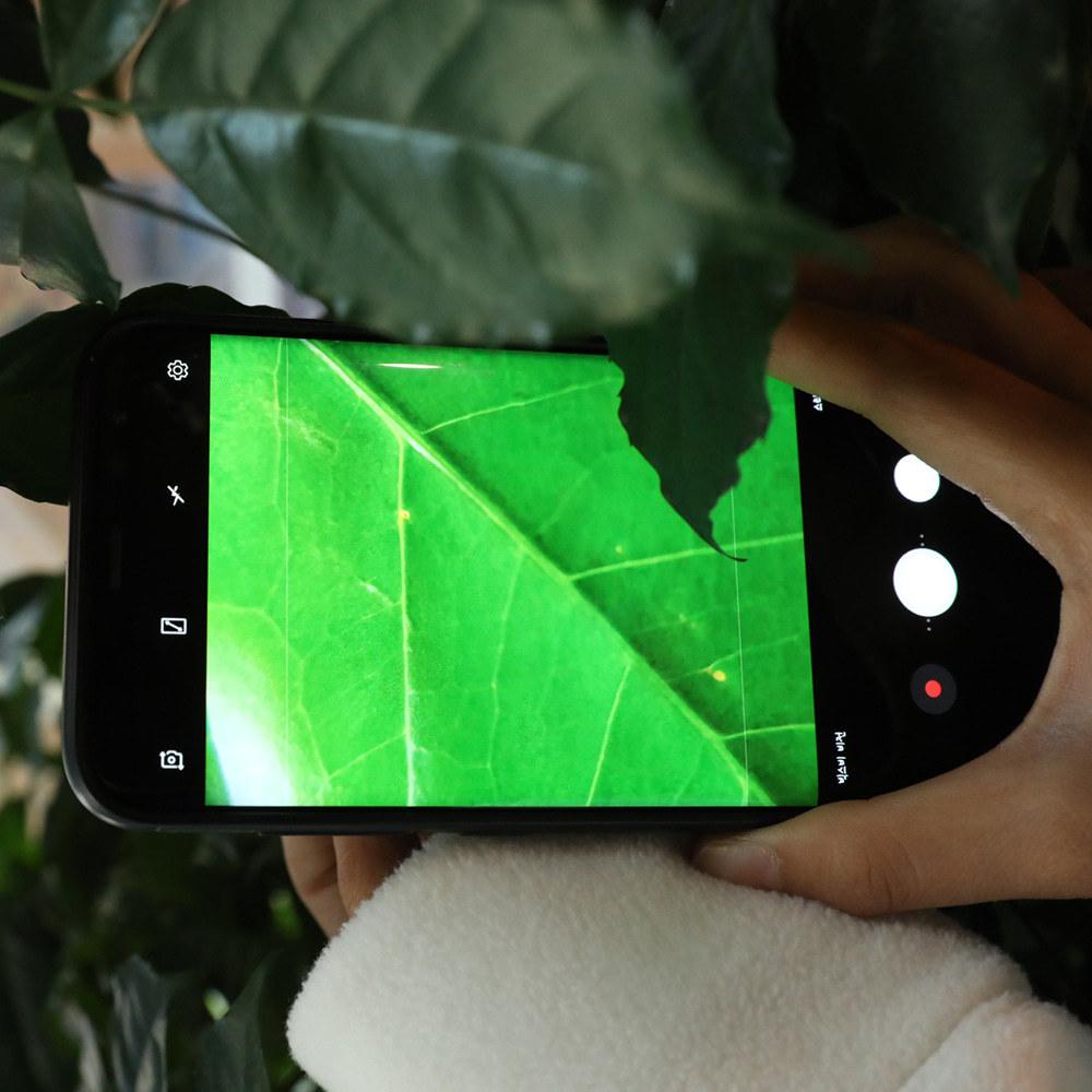 폰빔 PhoneBeam미니현미경 80배밝게