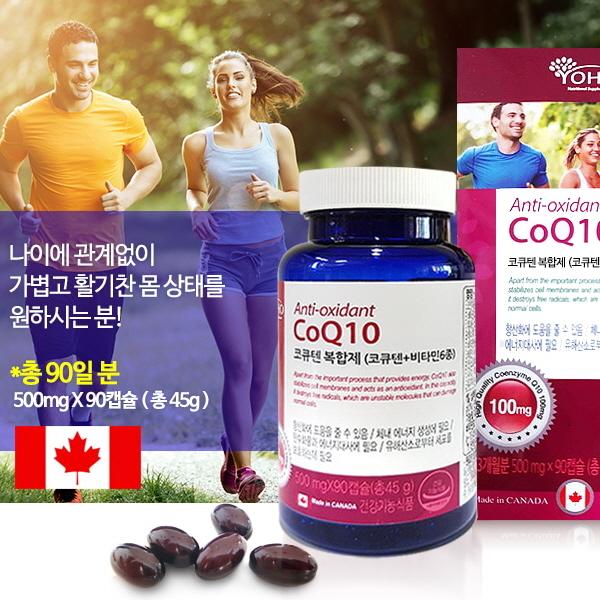 요호-코큐텐 복합제(비타민6종) 포함 90캡슐