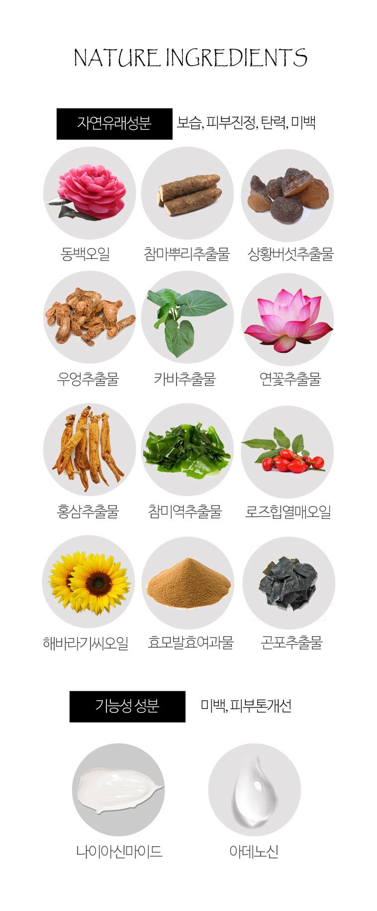 아틸라 Dr.컨트롤 수분크림 + 영양크림 - 아틸라, 49,000원, 크림/오일, 크림