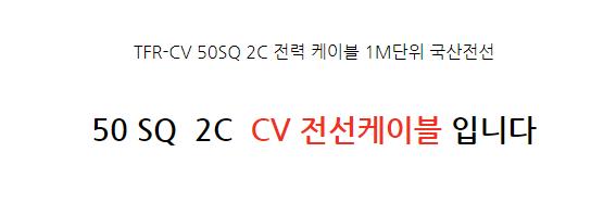 TFR-CV 50SQ 2C 전력 케이블 1M단위 국산전선 - 천지몰, 16,400원, 리빙조명, 플로어조명