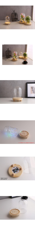 LED 무드 원목 유리돔 글라스돔 (대) - 글라스코, 29,600원, 화병/수반, 유리화병