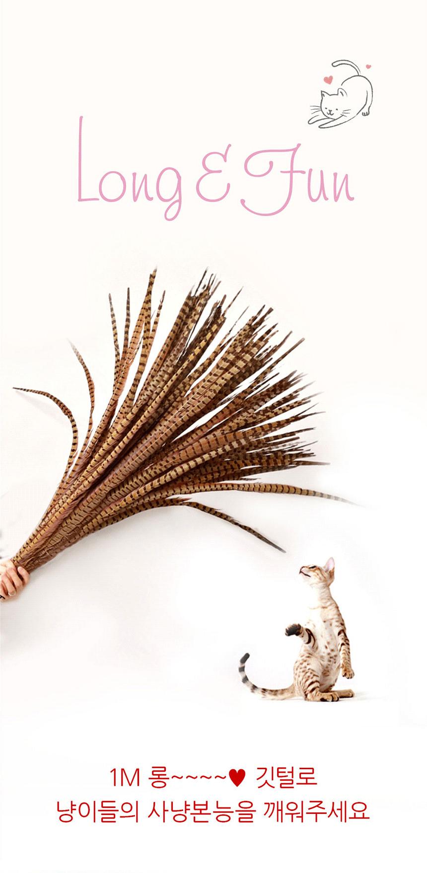 1m 롱 꿩깃털 5개 고양이 깃털 장난감 다묘네 낚시대33,900원-해지인펫샵, 고양이용품, 장난감/스크래쳐, 장난감바보사랑1m 롱 꿩깃털 5개 고양이 깃털 장난감 다묘네 낚시대33,900원-해지인펫샵, 고양이용품, 장난감/스크래쳐, 장난감바보사랑