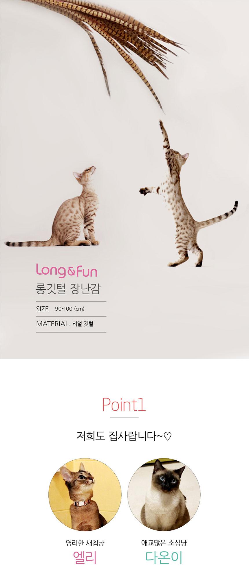 1m 롱 꿩깃털 3개 고양이 깃털 장난감 새깃털 낚시대24,000원-해지인펫샵, 고양이용품, 장난감/스크래쳐, 장난감바보사랑1m 롱 꿩깃털 3개 고양이 깃털 장난감 새깃털 낚시대24,000원-해지인펫샵, 고양이용품, 장난감/스크래쳐, 장난감바보사랑