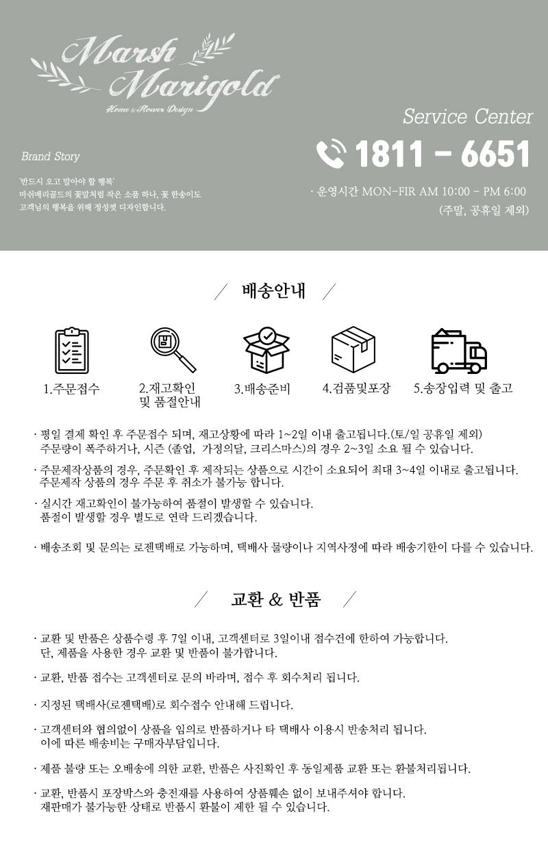조화 카네이션 하트 화분 (2COLOR) - 마쉬매리골드, 10,900원, 조화, 부쉬