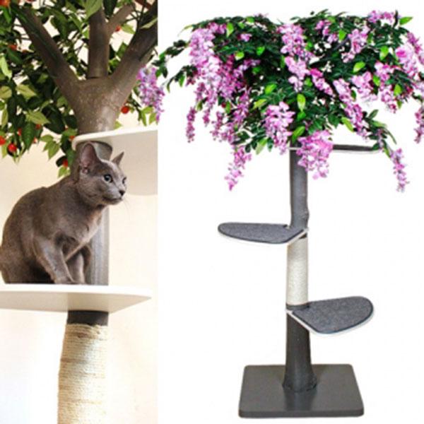 펫모닝 숲속의 고양이 라일락 캣트리