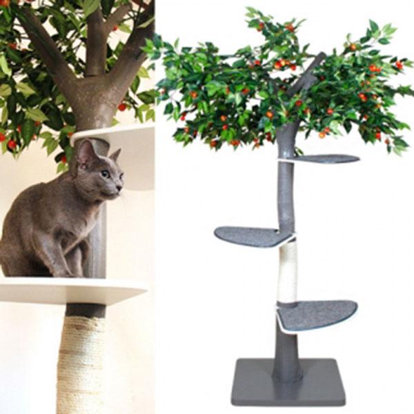 펫모닝 숲속의 고양이 체리 캣트리