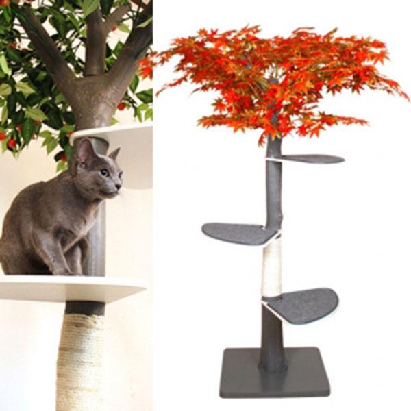 펫모닝 숲속의 고양이 단풍 캣트리