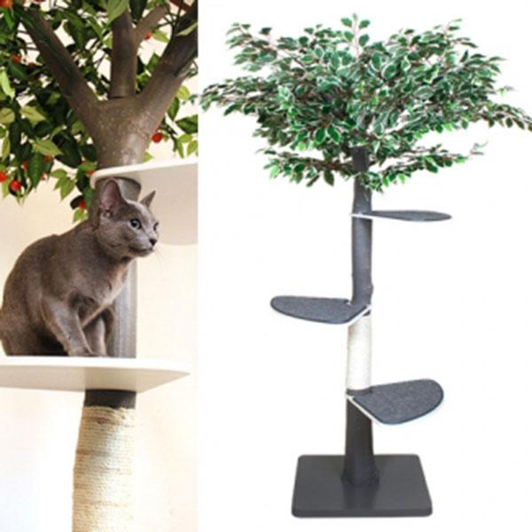 펫모닝 숲속의 고양이 벤자민 캣트리