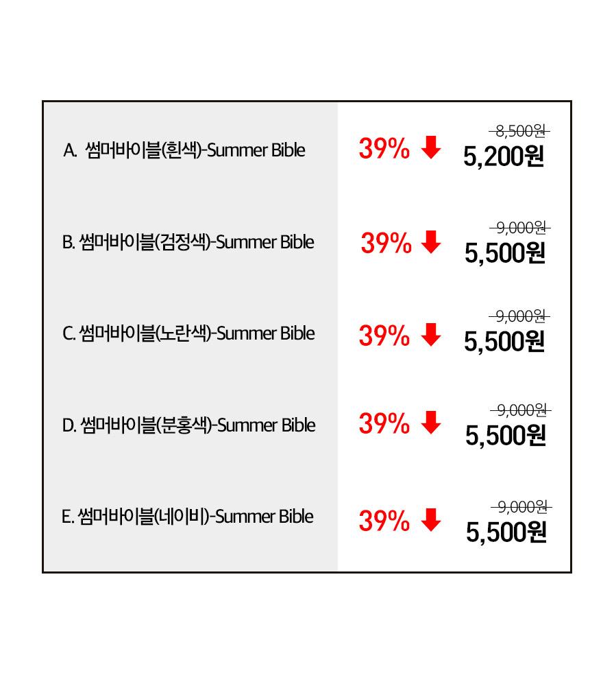 단체티셔츠 Summer Bible 썸머바이블 성인용 옵션별 가격