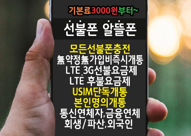 선진국형 이동통신 앤텔레콤