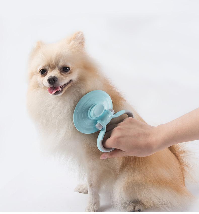강아지 빗 애견 애묘 미용 고양이 알파 브러쉬 - 펫블라썸, 16,800원, 미용/목욕용품, 브러쉬