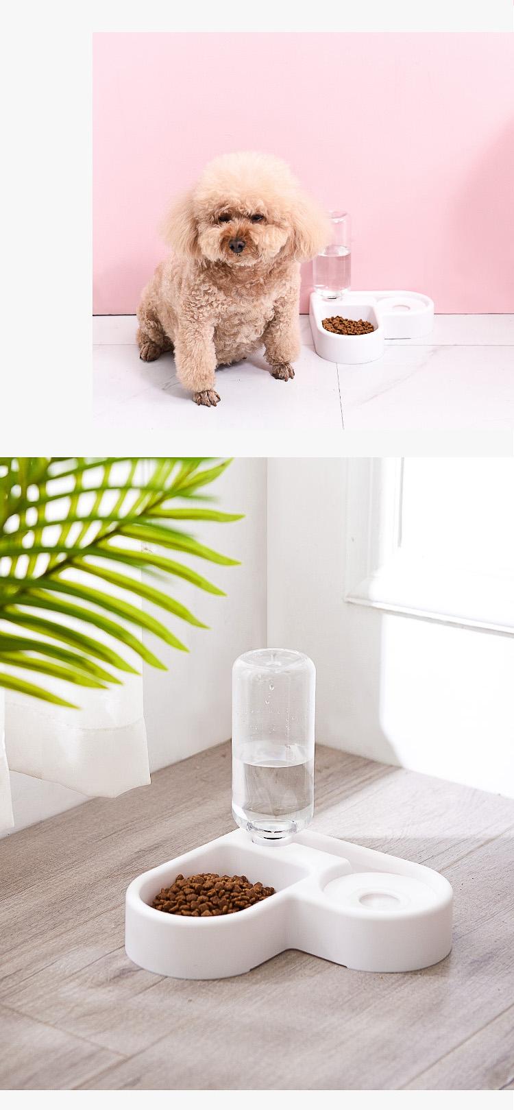 강아지 식기 고양이 식탁 밥 물 그릇 화이트 펫 보울 - 펫블라썸, 7,800원, 급수/급식기, 식기/식탁