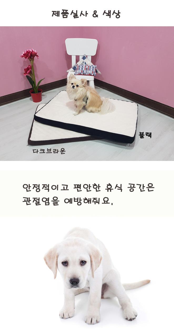 강아지 집 하우스 고양이 방석 쿠션 펫 메모리폼 매트 - 펫블라썸, 20,800원, 하우스/식기/실내용품, 방석/매트