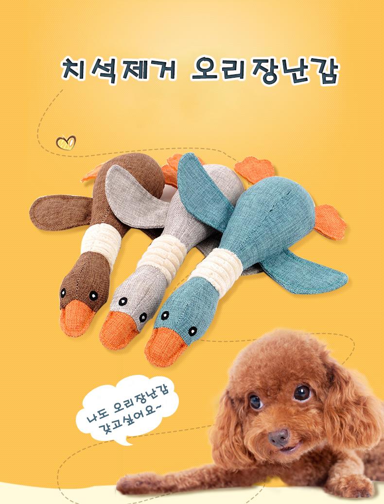 강아지 토이 터그 놀이 실타래 치석제거 오리 장난감 - 펫블라썸, 7,800원, 장난감/훈련용품, 장난감