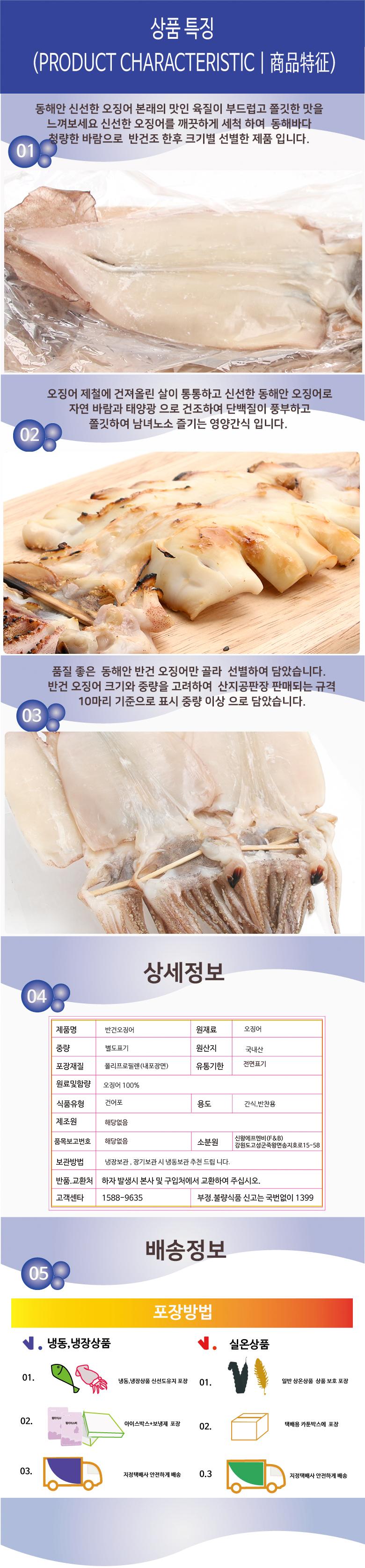 squid_a.jpg