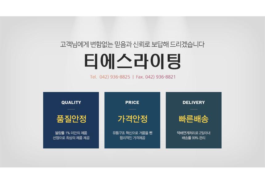 티에스라이팅 - 소개