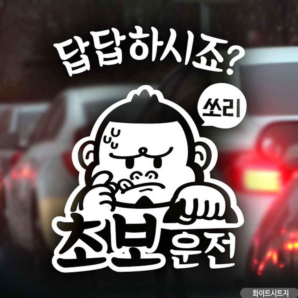 자동차스티커 초보답답 싸나이 초보운전 화이트시트지 차량스티커
