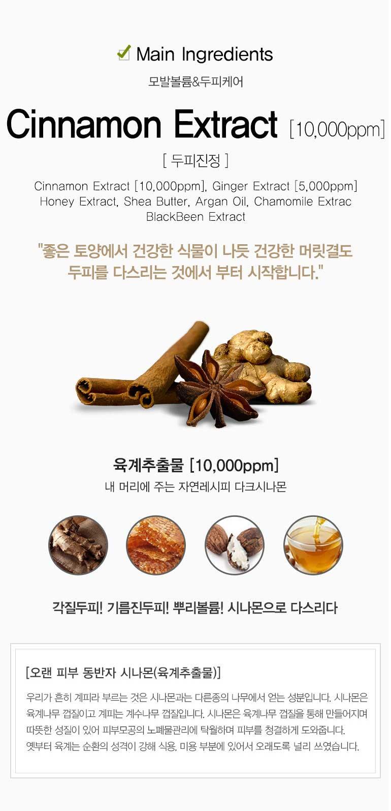 다크시나몬 지성케어 2종(샴푸500g+헤어에센스) - 딥퍼랑스, 53,600원, 헤어케어, 샴푸/린스