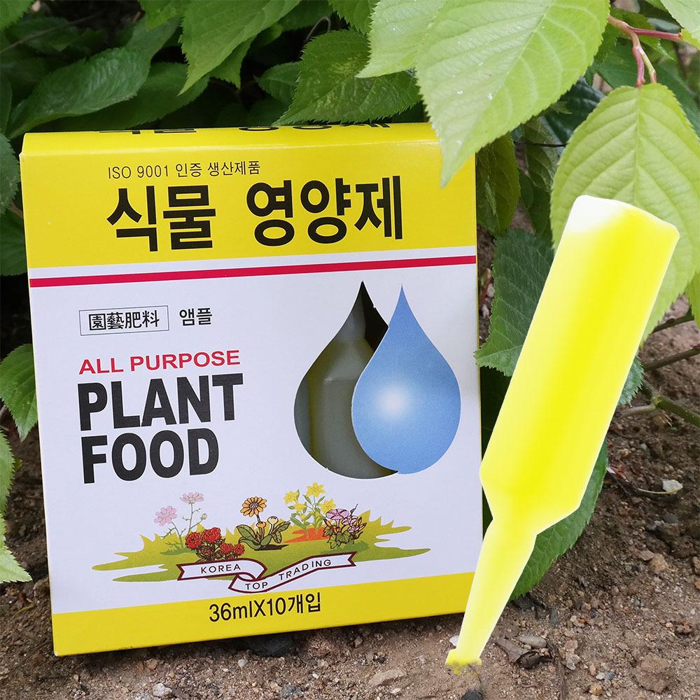 식물영양제 10P 화초 수목 난 화분 비료 앰플