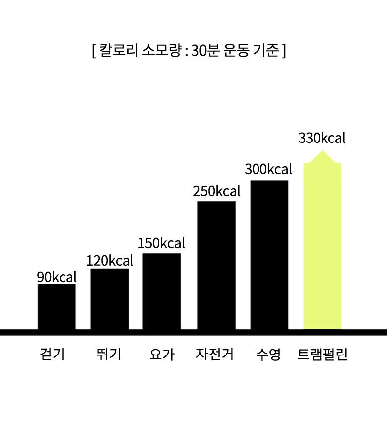 트램폴린 - 홀트레이드, 129,000원, 운동기구/소품, 운동기구
